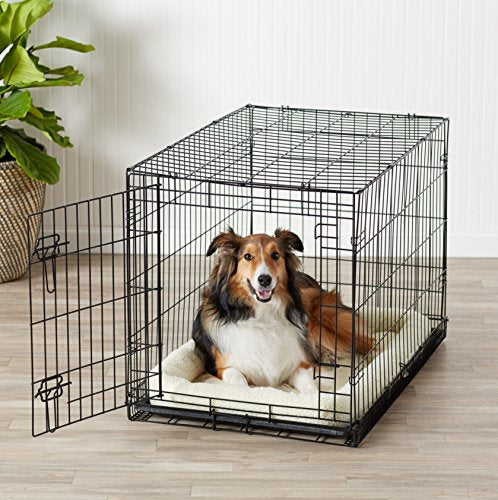 36 Inches Single-Door Folding Metal Dog Crate