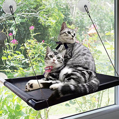 Superb Cat Window Perch Hammock Cat Bed Kitty Sunny Seat Durable Pet Perch With Upgraded Version 4 Big Suction Cups Cat Bed Holds Up To 60Lbs Dailytribune Chair Design For Home Dailytribuneorg