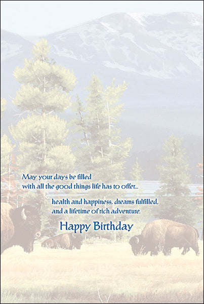 Leanin' Tree Yellowstone Solitude Buffalo Birthday Card