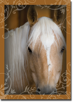 Divine West Horse Inspirational Greeting Card Friend GC09017