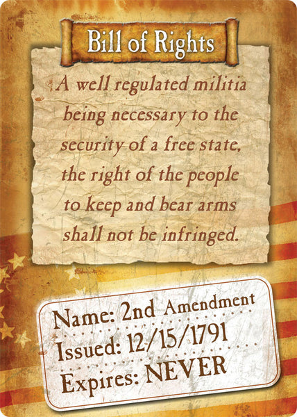 Bill of Rights 2nd Amendment Gun Sign 1591