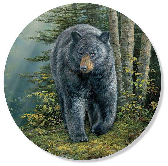 Black Bear Ceramic Coasters 4209101075