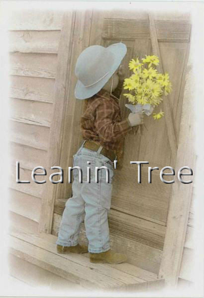 Leanin Tree Flowers For My Darlin Love Greeting Card LVT34044