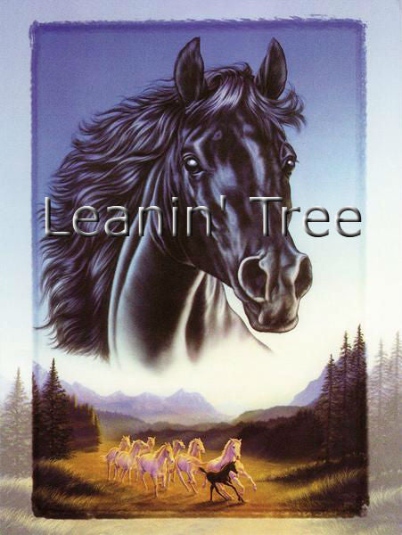 Leanin Tree Horses Birthday Greeting Card BDG43632