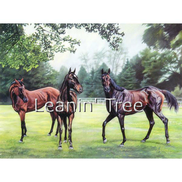 Leanin Tree Horses Legacy Birthday Greeting Card BDG43630