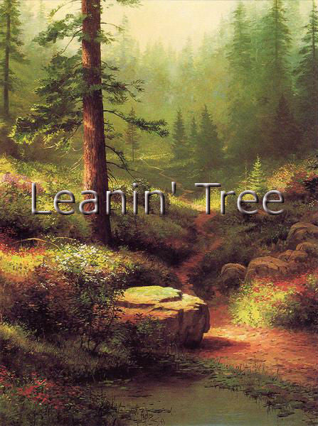 Leanin Tree Mountain Gallery Sympathy Greeting Card SYG43378