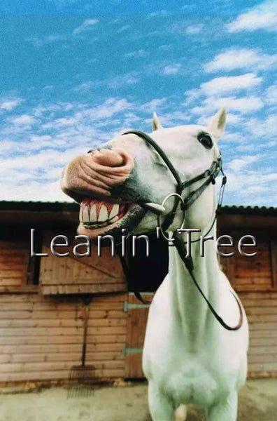Leanin' Tree Smile It's Your Birthday Horse Card 17501