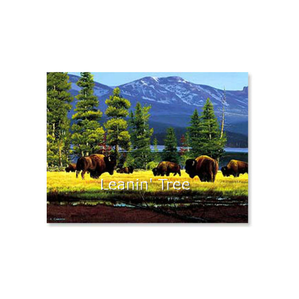Leanin' Tree Yellowstone Solitude Buffalo Birthday Card 20726