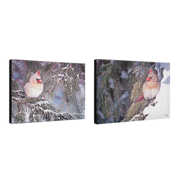 Winter Cardinals In The Pines Canvas Prints 71024