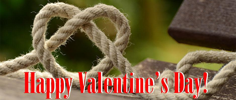 Free Shipping Items