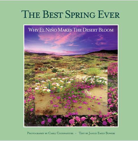 The Best Spring Ever: Why El Niño Makes the Desert Bloom