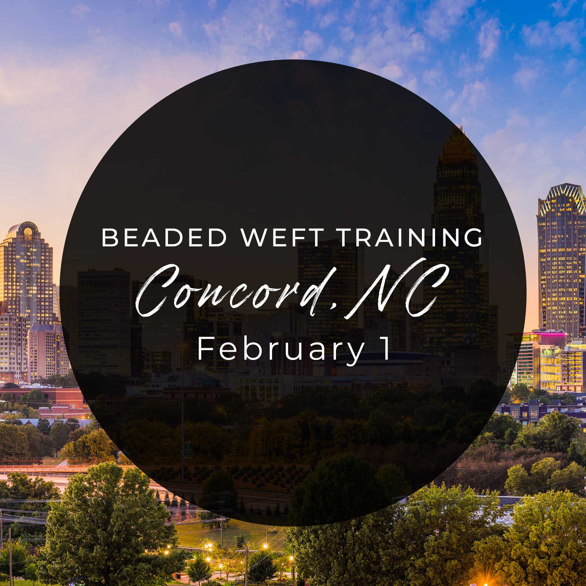 Ticket - Laced Hair Beaded Weft Extension Training Course (Concord, NC)