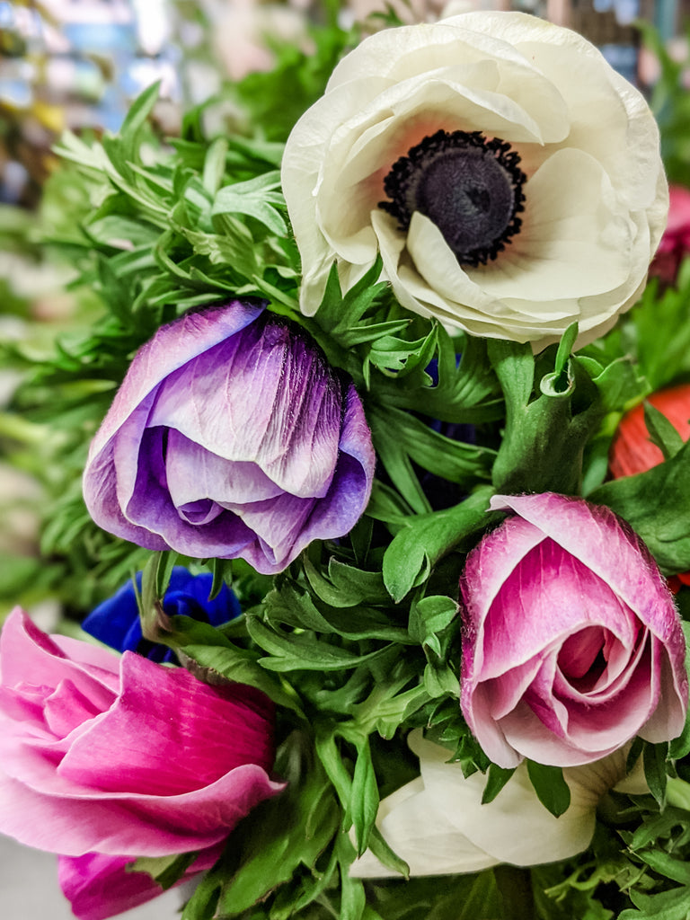 Laurel's Anemone Bouquet
