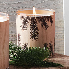 Thymes Frasier Fir Northwoods Candle