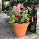 shades of pink planter