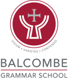 Balcombe Boys Summer Socks