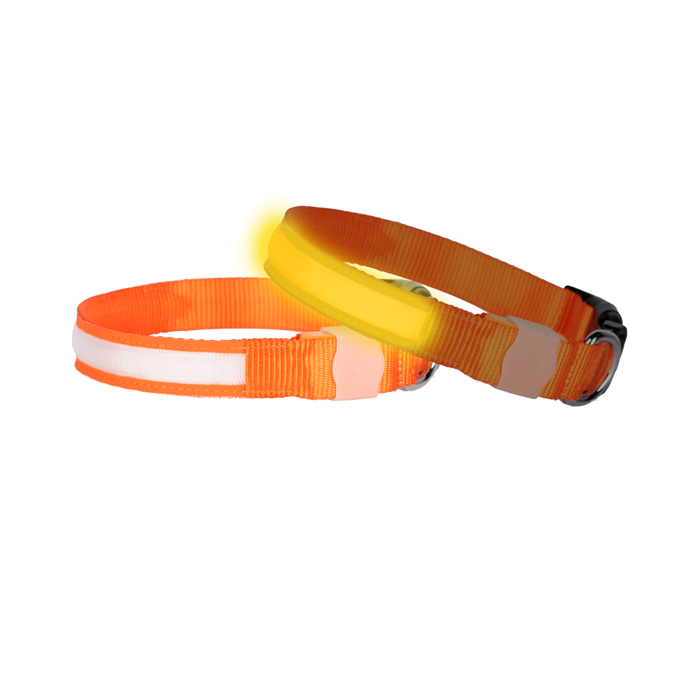Colour code led dog collar orange sunset small doglite - Sunset small spaces collection ...