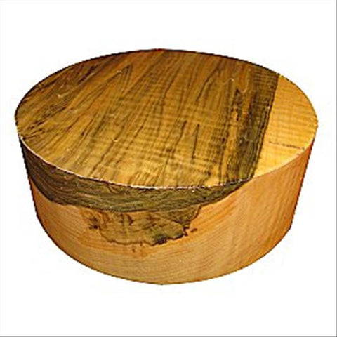 "10""x8"" Curly Spalted Ambrosia Maple Wood Bowl Turning Blank"