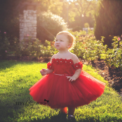 her first birthday dress, first birthday, short dresses, princess dresses, itty bitty toes, couture kids, kids couture, fall winter dress, luxury children clothes