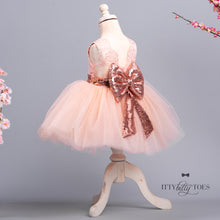 Princess Aisha Dress (Rose Gold)