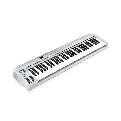 Ashton UMK61 61-Key Midi Keyboard