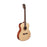 Cort Abstract Limited Electro Acoustic Guitar