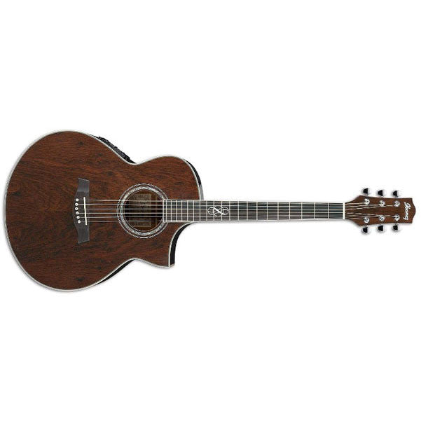 Ibanez EW20WNE Electro Acoustic Guitar - Natural