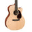 Martin GPCX1AE Grand Performance 6-String Electro Acoustic Guitar - Richlite Fretboard