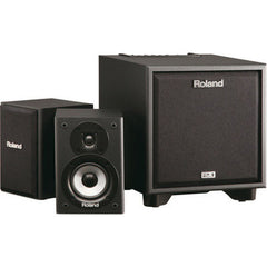 Roland CM-110 2.1 Monitor System