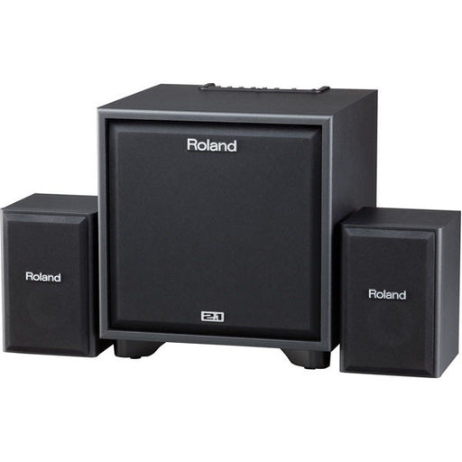 Roland CM-220 2.1 Monitor System