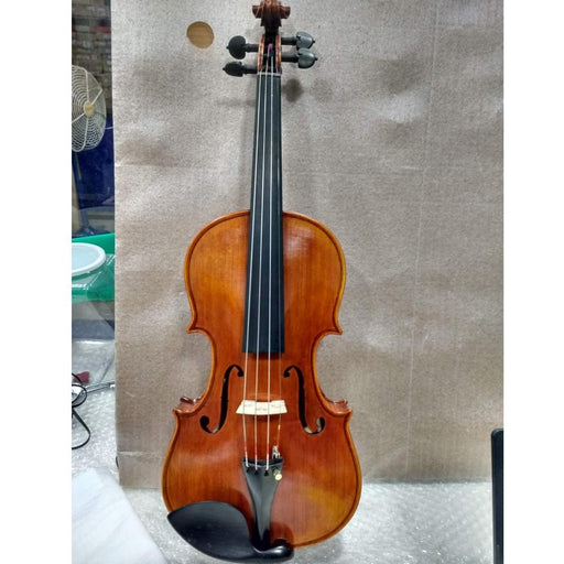 Stentor SR1880 Violin Arcadia 4/4 - Open Box B Stock