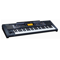 Roland E09IN Indian Edition Arranger Keyboard w/ Indian Sound Suite
