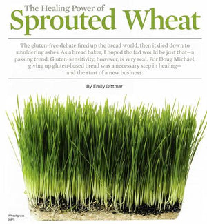 The healing power of sprouted wheat - the article