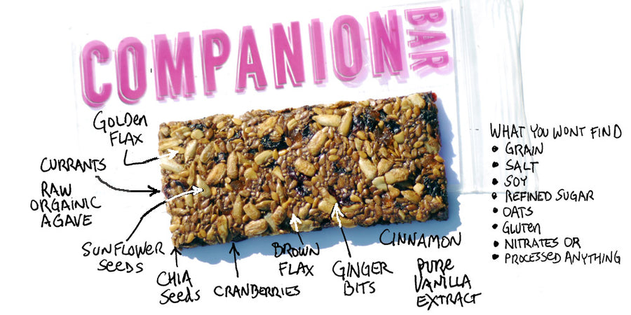 Companion Bits (Fruit & Berry w/Ginger) - 5 oz per package