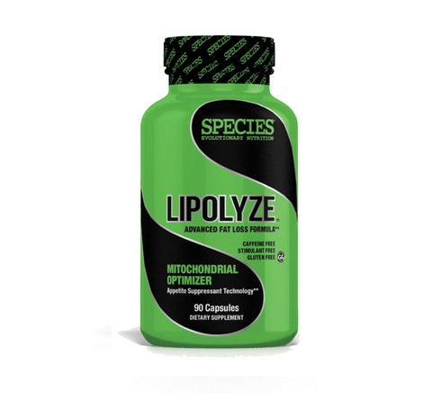 Lipolyze