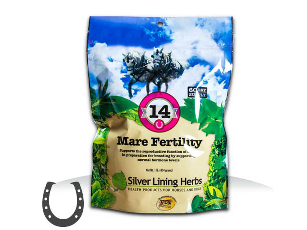 Silver Lining #14 Mare Fertility