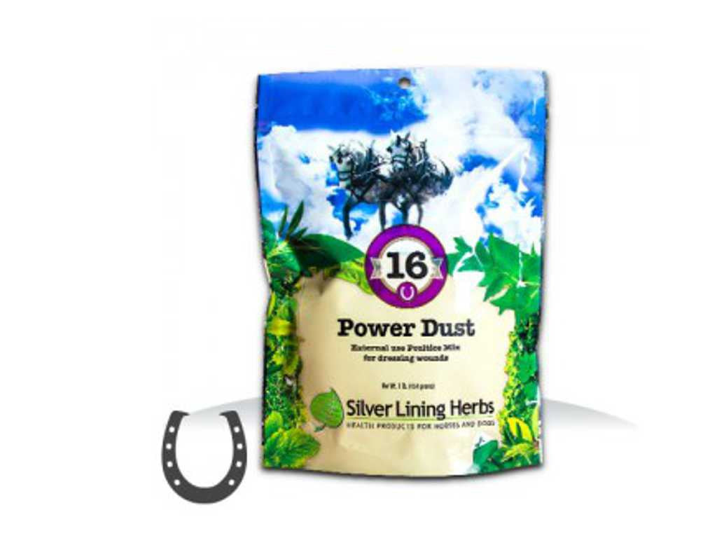 Silver Lining #16 Power Dust