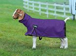 Weaver-Medium ProCool Mesh Goat Blanket with Reflective Piping