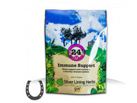 Silver Lining #24 Immune Support