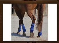 Classic Equine-Crossfit Boot-Front