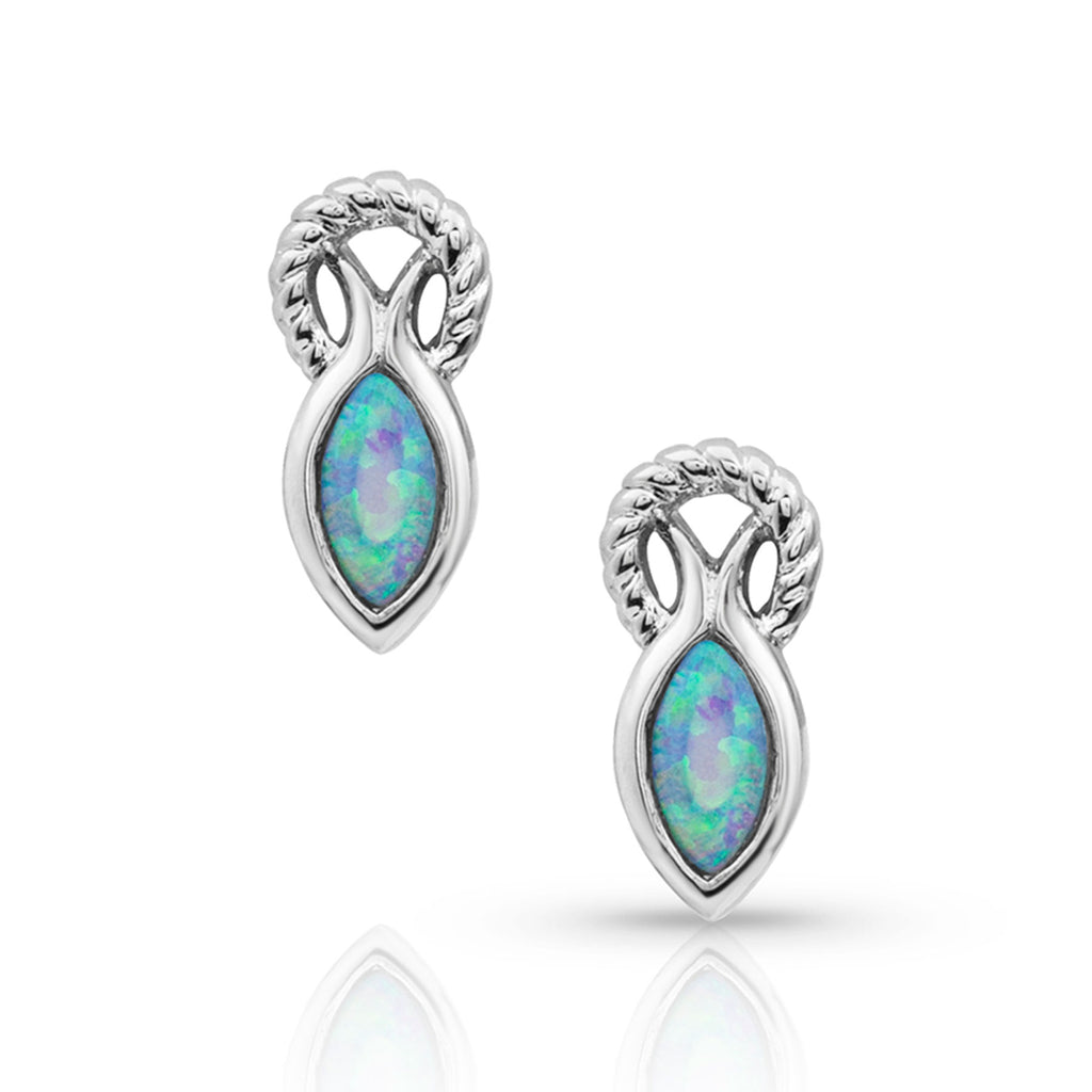 Montana Silversmiths Rooted In Water Earrings