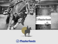 Masterfeeds Front Runner 15% Equine Developer Ration - 20KG
