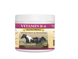 Riva's Remedies-Vitamin B-6 Powder/Metabolism & Hormones