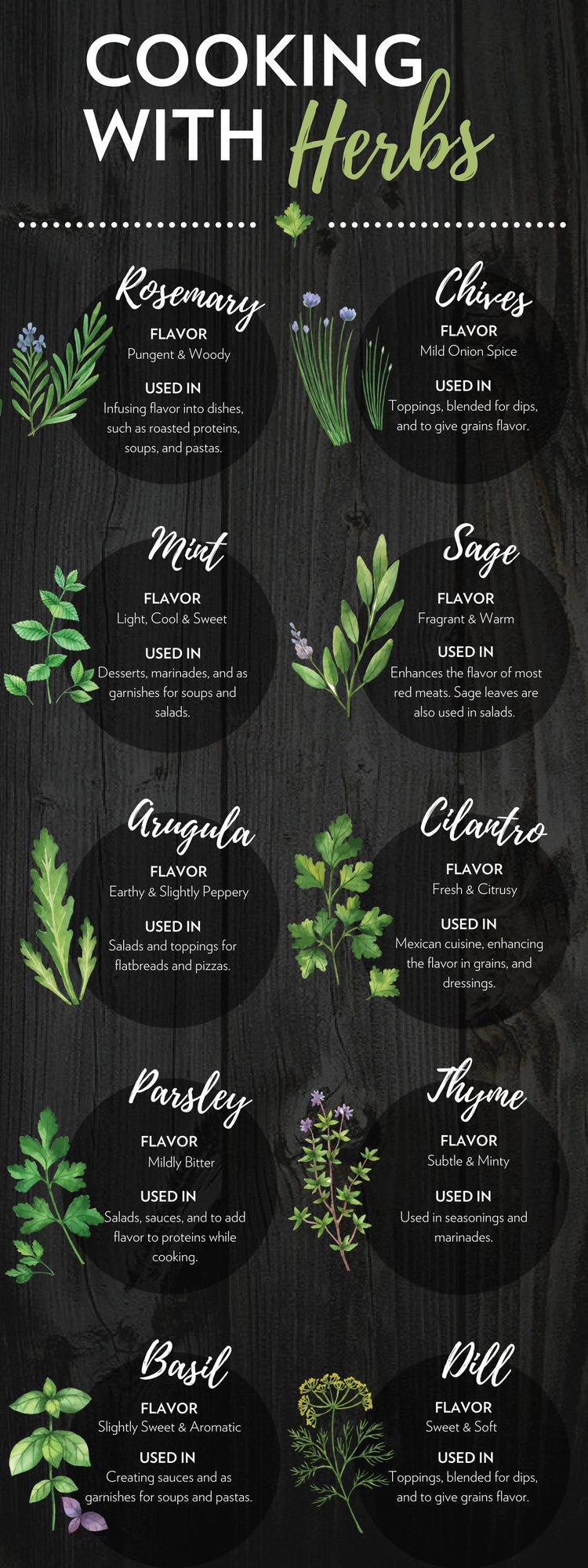 Cooking with Herbs | A Beginner's Guide