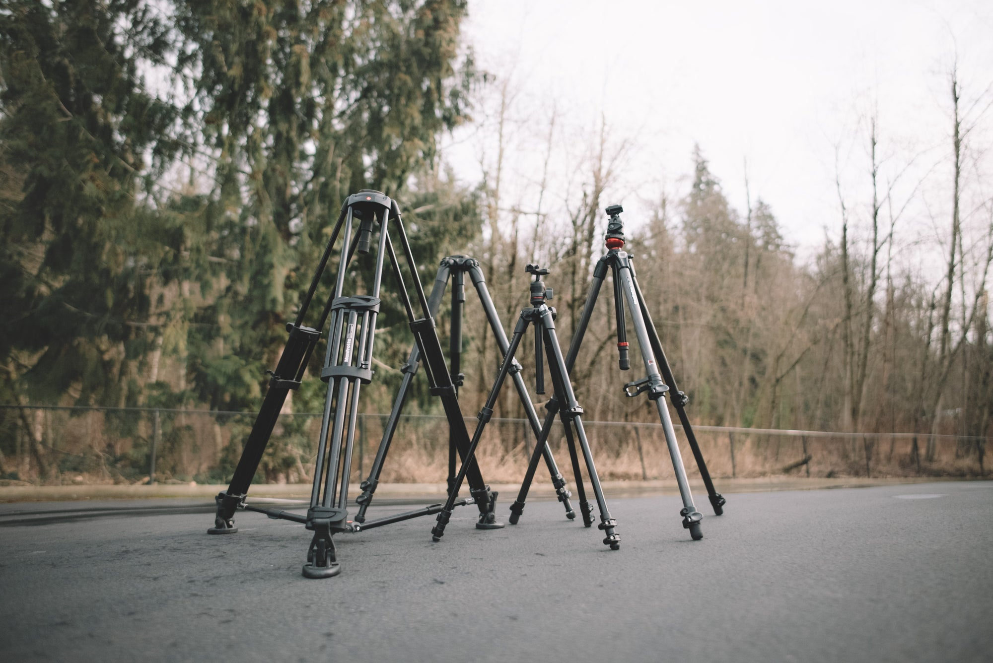 How to Choose a Tripod | MWR