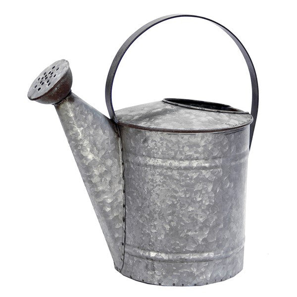 Large Galvanized Watering Can #117-8