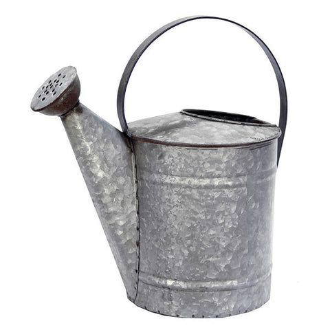 Large Galvanized Watering Can