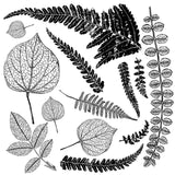 "IOD Decor Stamp Frond 12x12"" by Iron Orchid Designs"