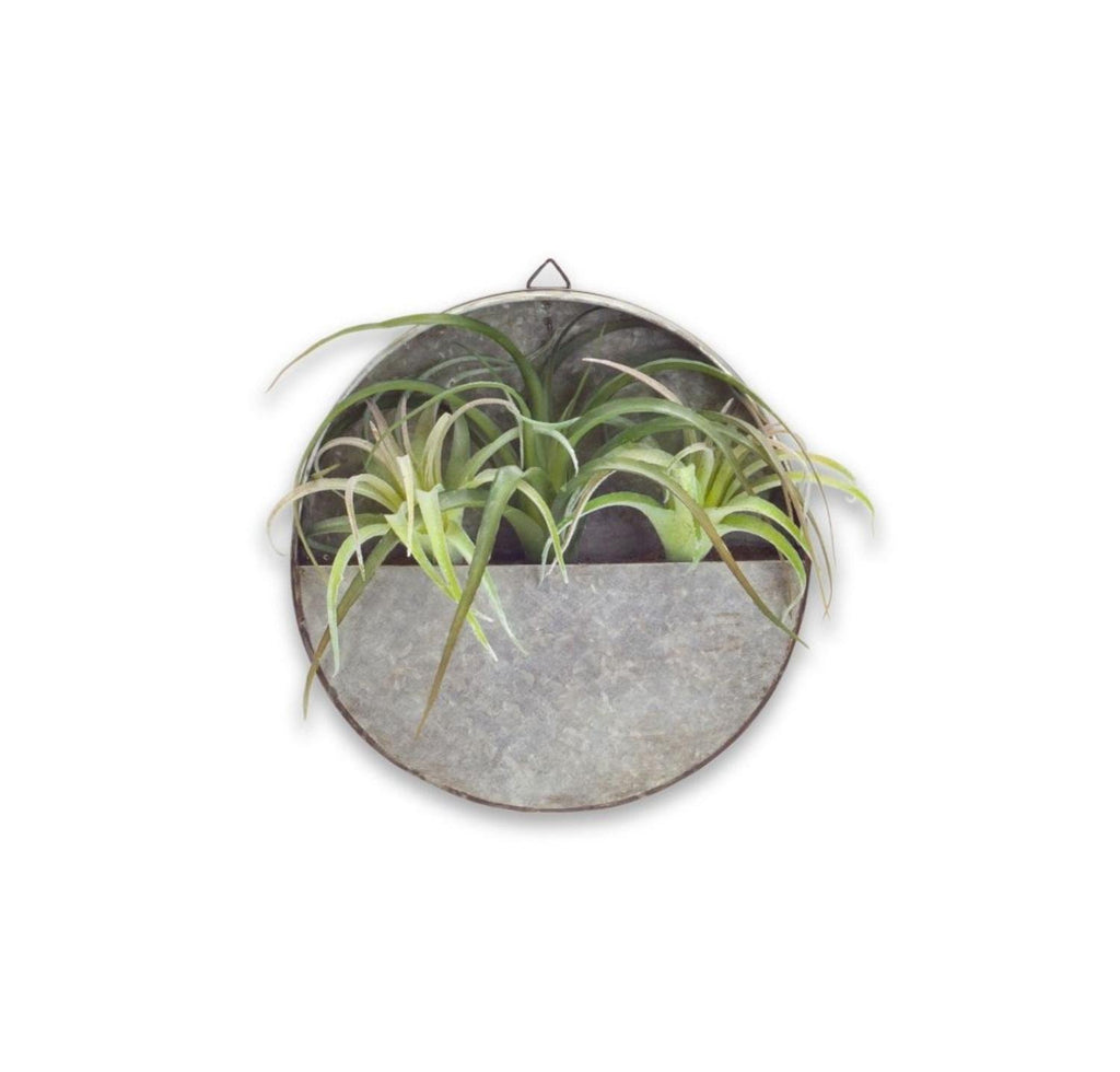 Wall Decor Tin Wall Pocket with Faux Succulent #117-91