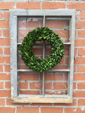 "Preserved Boxwood Wreath - 14"" #800-29"